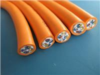 氟塑料绝缘硅橡胶护套电力电缆 ZR-F46(FG)3*4+1*2.5