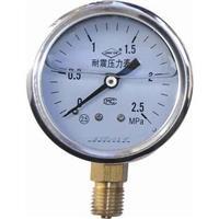 耐震压力表 YN-150BF