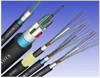 10芯单模光缆GYXTW-10b1 GYXTW-10b1