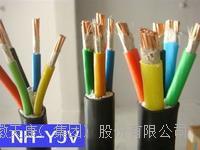 耐火补偿导线 耐火电缆 NH-VV, NH-VV22, NH-VPV