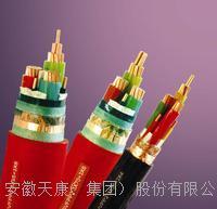 BPYJVP2R  ZR-BPYJVTP2-0.6/1KV 安徽天康供应变频电缆 BPYJVP2R、BPYJVTP2-0.6/1KV