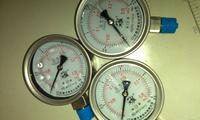 不锈钢耐震压力表 YTN-100