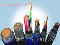 天康集团ZRC-DJFP3VP3R32计算机电缆