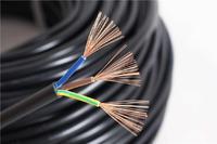 铜芯聚乙烯绝缘(阻燃)电子计算机(软)电缆 DJVV(R)