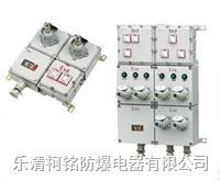 防爆檢修電源插座箱 BXS