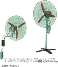 防爆(壁式、落地式)搖頭風扇 BTS系列