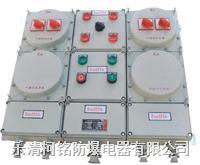BXM(D)防爆照明動力配電箱 BXM(D)53