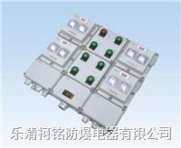防爆配電箱 BXM(D)81  FXM(D)