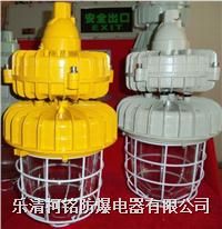 一體式防爆無極燈 BCD61-W