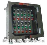 非標防爆箱,防爆電控箱 BXK