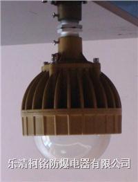 10W 15W 20W 25WLED防爆燈