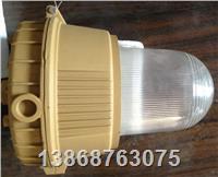 SBD隔爆型3107應急防爆燈 SBD3107
