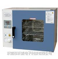 電熱鼓風干燥箱 DHG