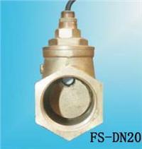 FS-DN20水流開關 FS-DN20