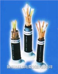 DJYPVP計算機用屏蔽電纜 DJVPV,DJVVP,DJYVP,DJYJVP,DJYPV,DJYJPV,DJVPVP,DJYPV
