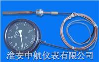 壓力式溫度計 WTZ-280