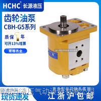 齿轮油泵 CBH-G532-AFP