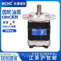 齿轮油泵 CBHC-F11-ALP平右