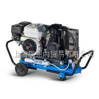 意大利進口壓縮機 EOLO330/SH