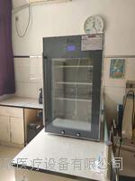 1000升醫用冷藏柜(2-8℃保存疫苗)  疫苗保存低溫冷藏柜 FYL-YS-50LK/100L/66L/88L/280L/310L/430L/828L/1028L