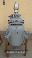 100ML電加熱不銹鋼反應釜