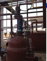 10ML催化氫化反應器