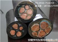 (高壓扁電纜)(ZA-YJGCFPB-6/10KV22)(寶雞) ZA-YJGCFPB-6/10KV22