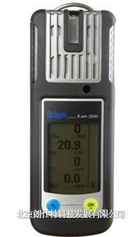 復合氣體檢測儀 X-am2500型