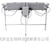 大小鼠T迷宮實驗視頻分析係統