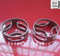金属扁环填料 φ25 φ38 φ50 φ76 φ100