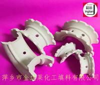 陶瓷异鞍环填料  φ25 φ38 φ50 φ76 φ113等