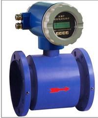 分体型电磁流量计 AMF-R100-101-1.6-0000