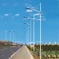 太陽能風能路燈