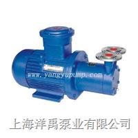 CWB磁力旋渦泵 CWB32-50;CWB20-65;CWB32-75;CWB40-140;