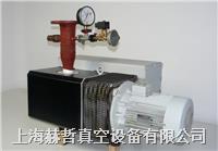 进口真空泵维修 上海真空泵维修 德国Leybold SV300 真空泵维修 草莓芭乐视频真空泵维修