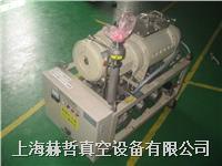 日本荏原真空泵維修 Ebara 多級羅茨真空泵維修 40*20 幹式真空泵維修