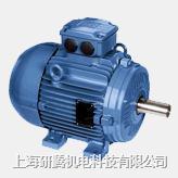 进口超高效电机IE3 W21