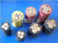 广东电缆厂HYA大对数电缆 广东电缆厂HYA大对数电缆