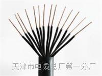 PROFIBUS DP电缆 PROFIBUS DP电缆