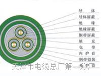 双色电缆BVR25平方 双色电缆BVR25平方