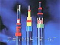 矿用视频线 MSYV-75-5  MSYV-50 矿用视频线 MSYV-75-5  MSYV-50