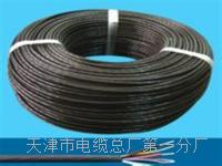 控制电缆KVVP2-22-10×1 控制电缆KVVP2-22-10×1