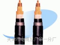 控制电缆KVVP2-22--2×0.75 控制电缆KVVP2-22--2×0.75