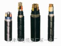 控制电缆KVVP22-10×1 控制电缆KVVP22-10×1