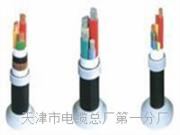 控制电缆KVVP4×0.75 控制电缆KVVP4×0.75