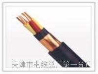 AZVP安装专用电缆15X32X0.2+2X48X0.2 AZVP安装专用电缆15X32X0.2+2X48X0.2