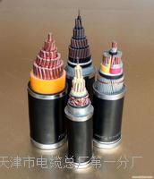 电源监控总线NH-RVS型号规格 NH-RVS电源电缆线