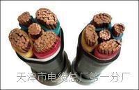 电源监控总线NH-RVS工艺标准 NH-RVS电源电缆线