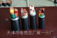 电气火灾监控线NH-RVS国标型号 NH-RVS电源电缆线
