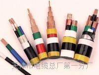 双屏蔽工程网线-千兆CAT6类双屏蔽4N级无氧铜线芯产品详情 HYA53电话电缆线